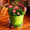 משלוח פרחים באשקלון
