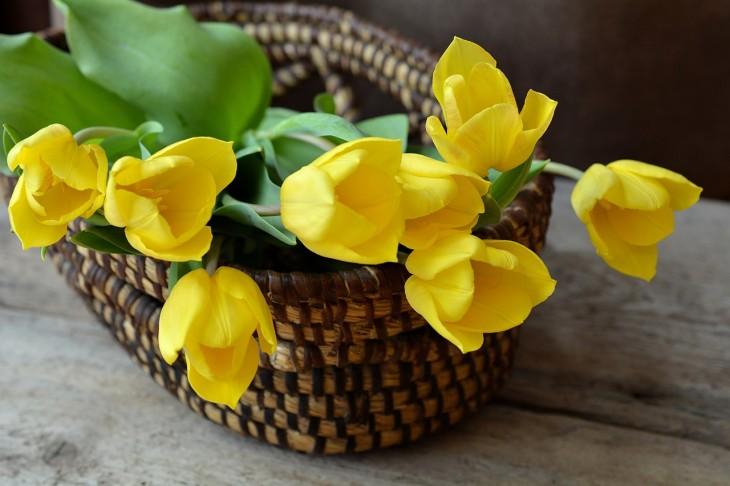 חנות פרחים בראשון לציון