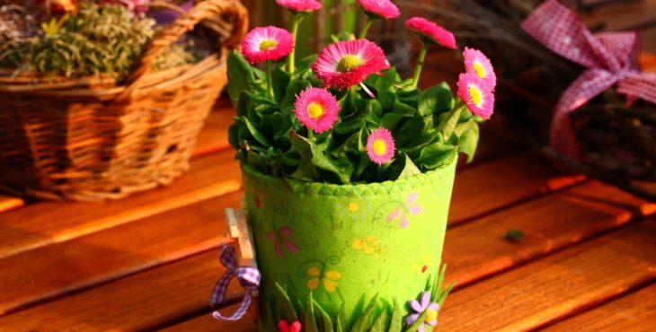 נורת לד לגידול צמחים