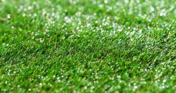 כל מה שרציתם לדעת על התקנת דשא סינטטי בגינה